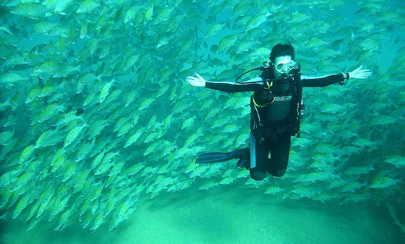 scuba diving in cabo san lucas