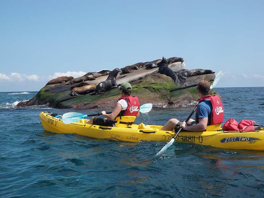Sea kayaking in Cabo Pulmo
