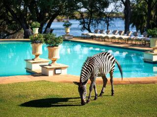 The Royal Livingstone Hotel