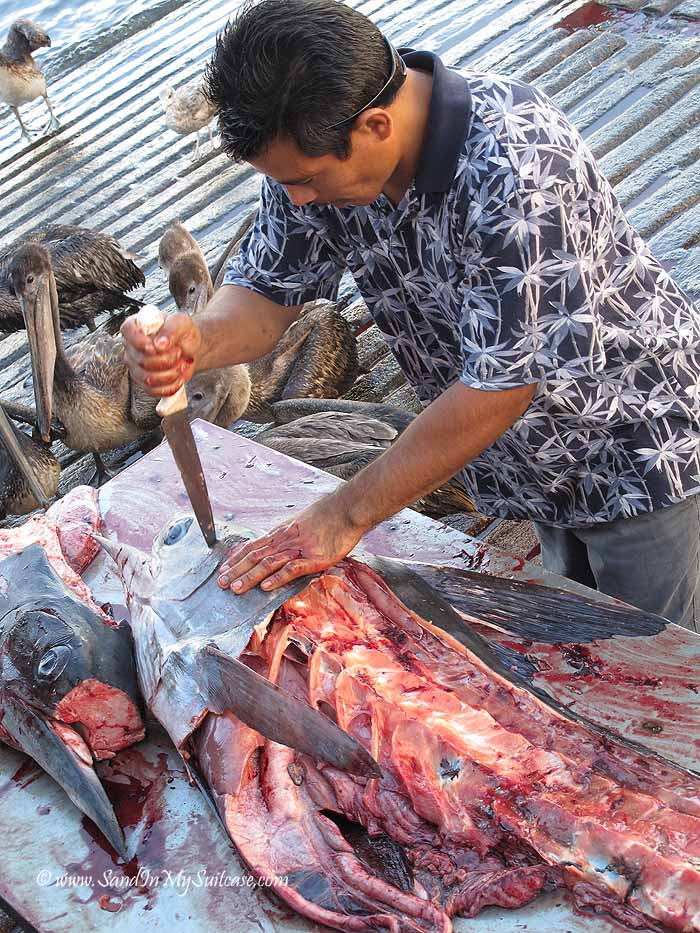 Filleting fish - a bloody scene