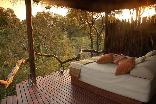 Simbambili Game Lodge Review Safari In South Africa