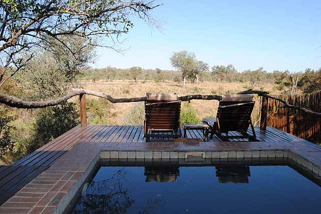 Each bungalow has a private plunge pool - credit Simbambili Game Lodge