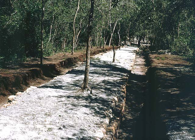 To travel between communities, the ancient Mayans built elevated white stone roads called sacbe