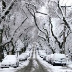 Snapshot Story #4: Snowy days in Vancouver