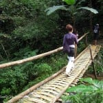 Hiking in Chiang Mai (Mae Lai Forest) – no tigers, but…