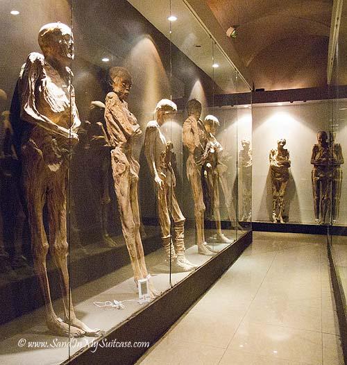 Mummies at the Guanajuato Mummy Museum