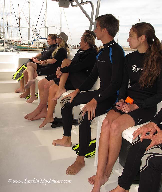 swim with whale sharks in La Paz - boat trip
