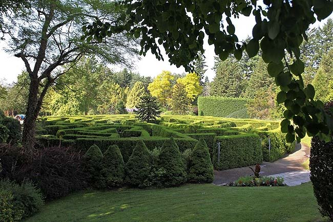Maze garden - photo VanDusen