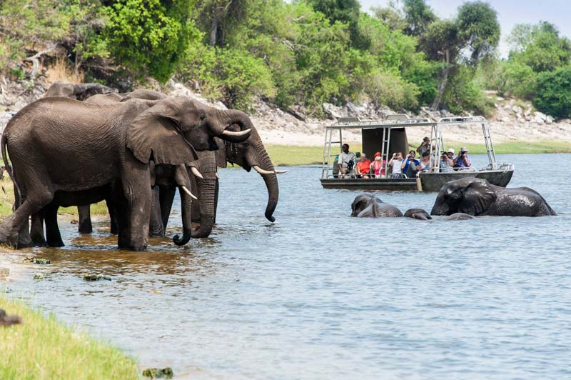 river cruising - Zambezi Queen