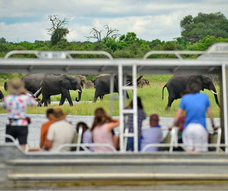 Zambezi Queen boat excursion
