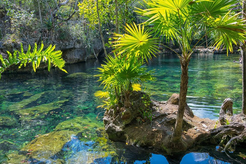 Cenote Azul is one of the best Playa del Carmen cenotes
