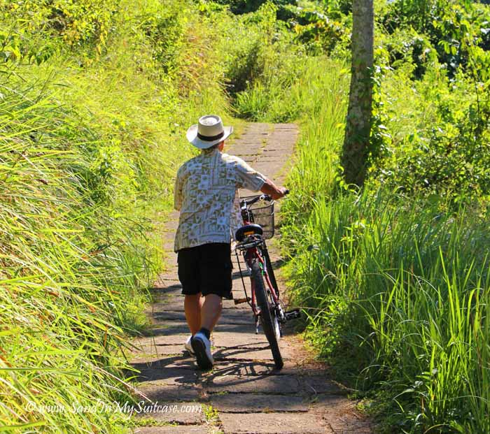 top things to do in bali - bicycle