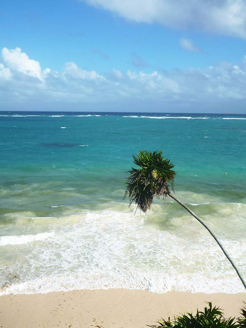 mayan ruins of tulum - beach