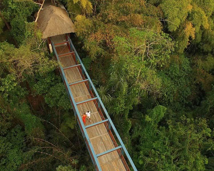 Best luxury resort in Bali: Four Seasons Sayan