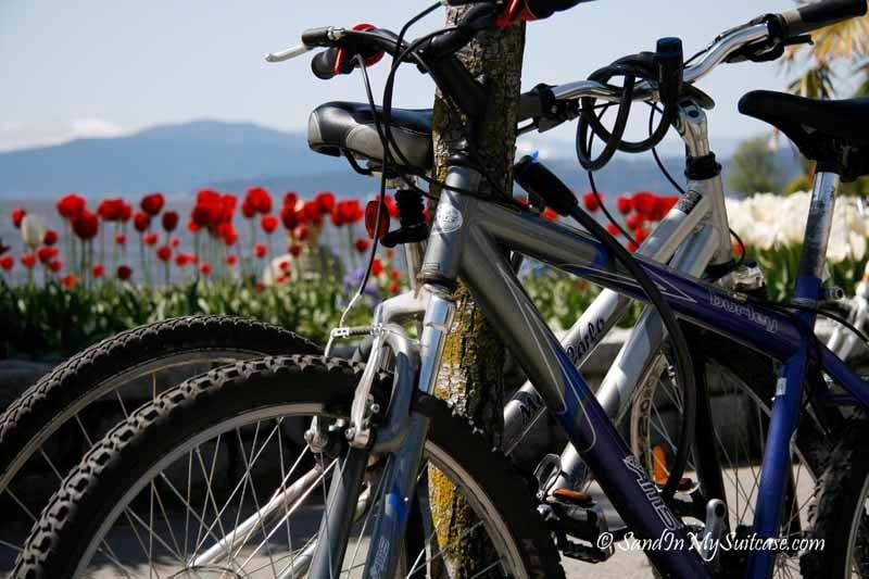 biking stanley park