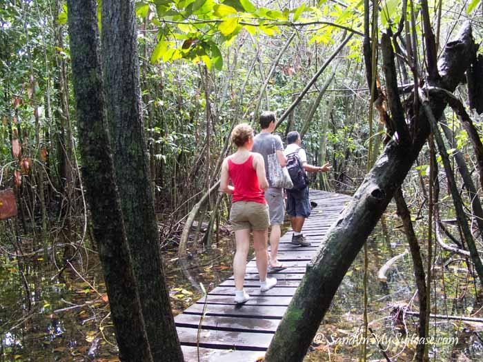 things to do in riviera maya - sian ka'an