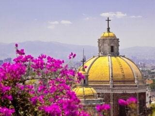 Cultural Things to Do in Mexico City