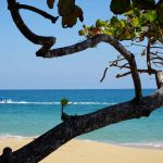 3 best places to stay in Bocas del Toro for a secluded tropical escape