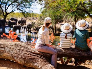 Family safaris at Thornybush