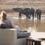 Chinzombo: Zambia safari camp wows with luxury and killer leopards