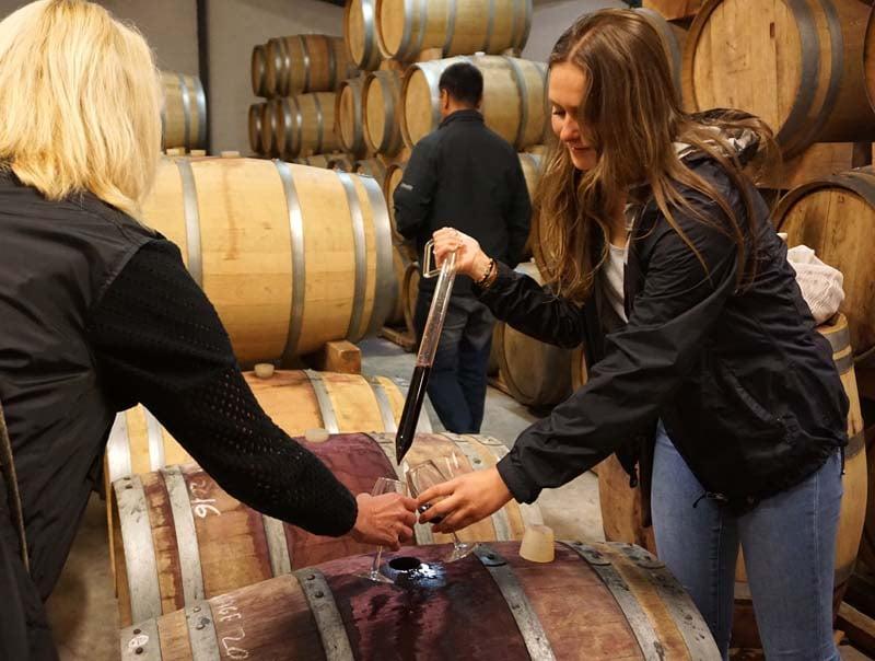 Wine Flies tour - pipette