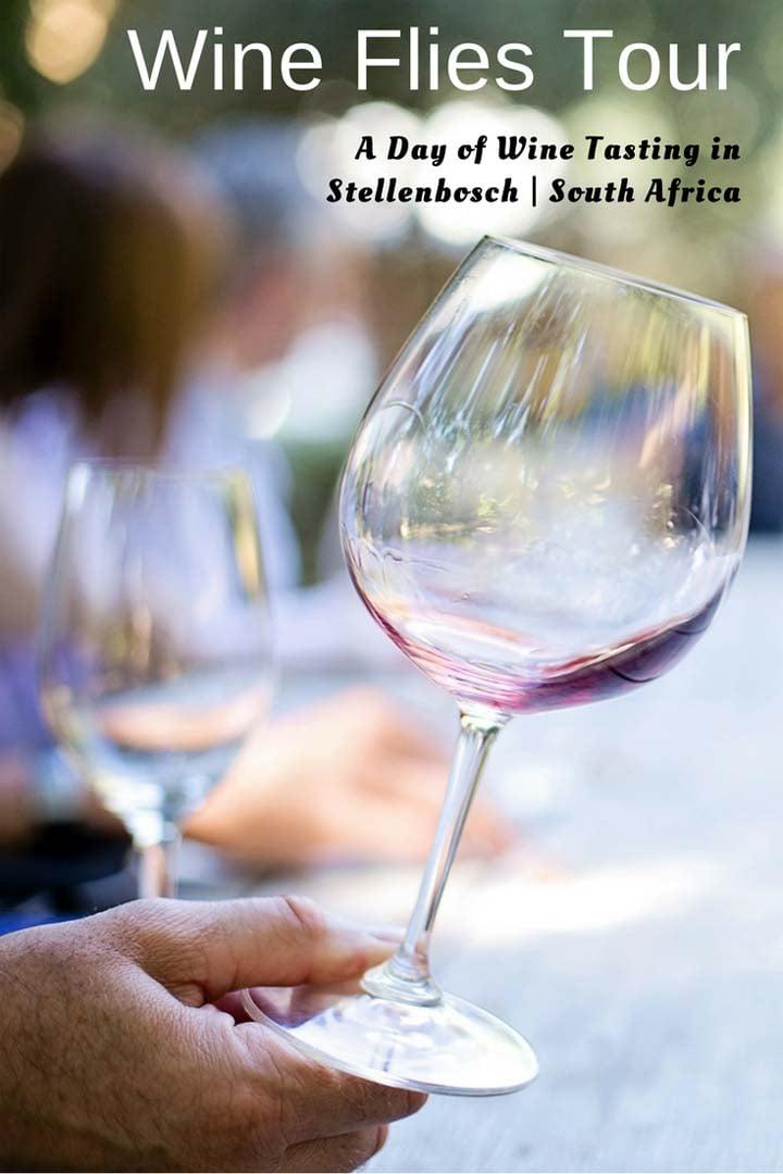Wine Flies wine tour in Stellenbosch