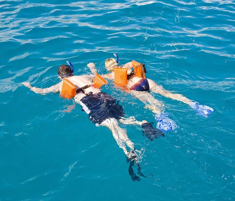 best snorkeling in cabo san lucas best tours an insider guide