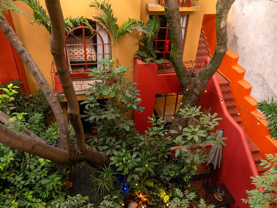 Red Tree House, Mexico City