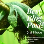 "How nice! We won the ""Best Blog Post"" (3rd Place) award!"