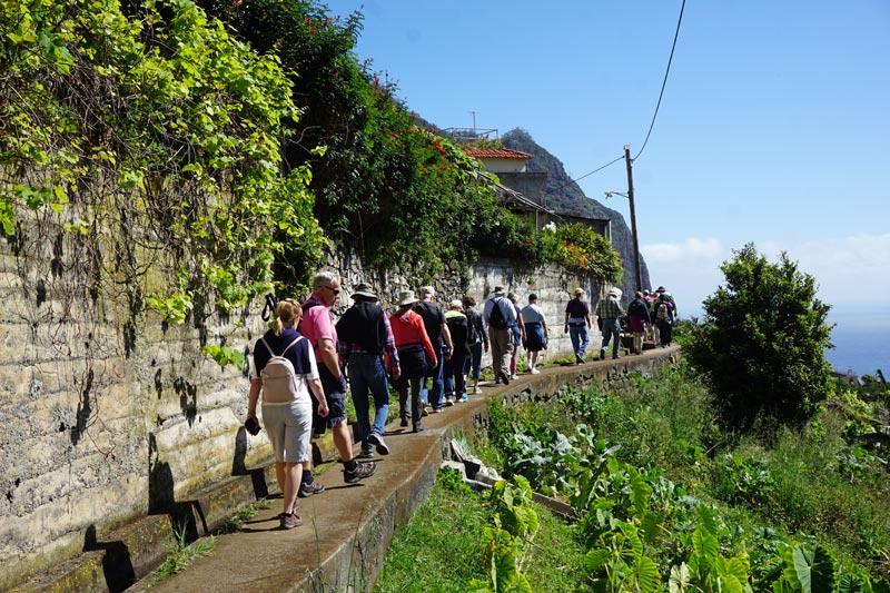 easy levada walks on Madeira