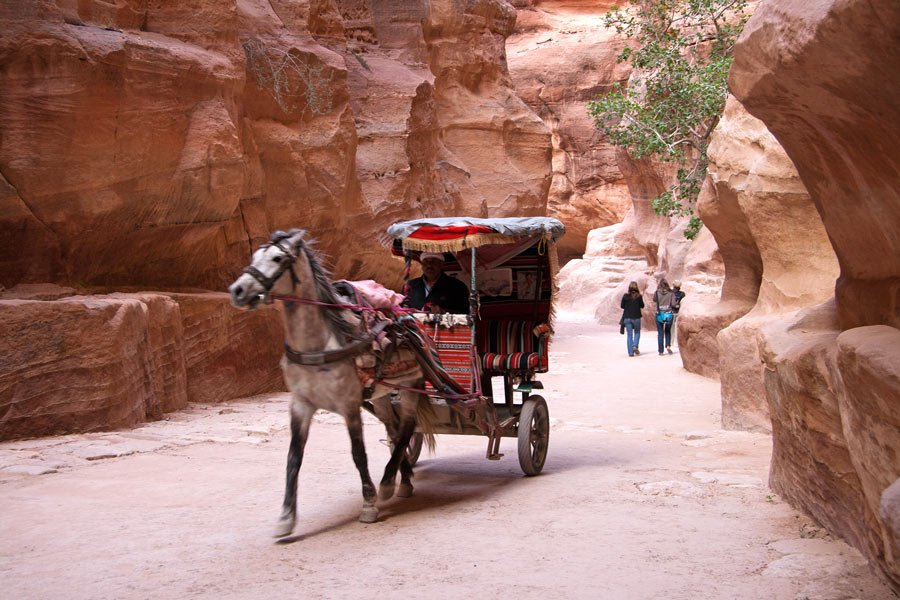 A horse pulls a carriage along the Petra Siq