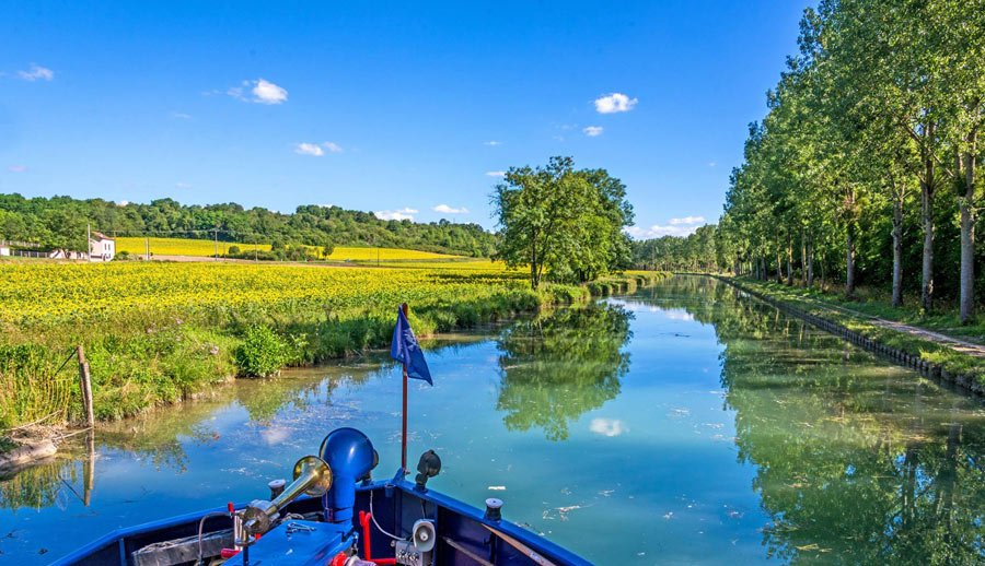 The river barge La Belle Epoque cruises the tree-lined Burgundy Canal, past yellow rapeseed fields (Credit: European Waterways)