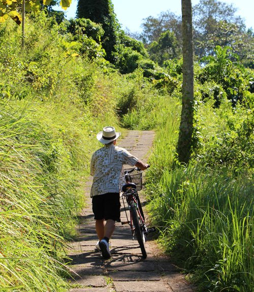 Bicycling in Bali