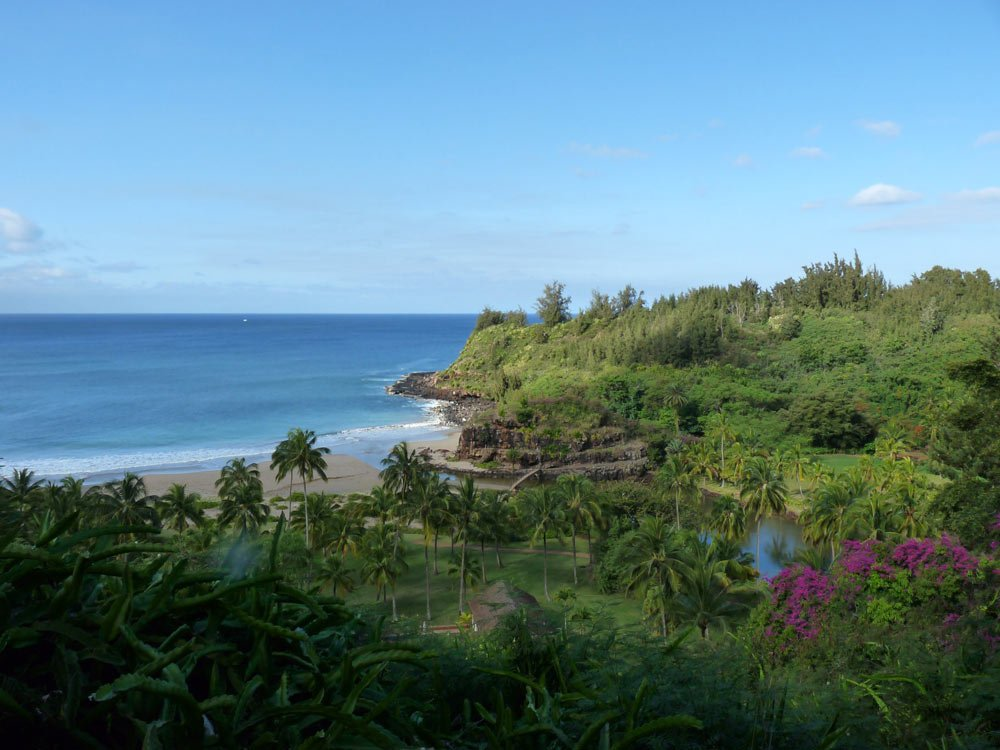 Botanical gardens in Kauai: Overlooking Allerton Garden