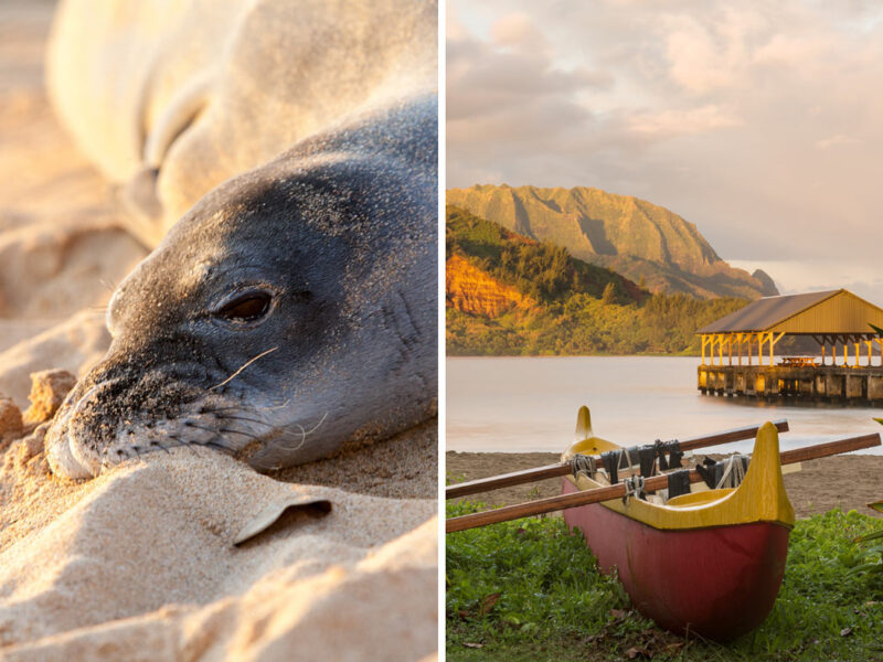 35 Fun things to do in Kauai (besides beaching)