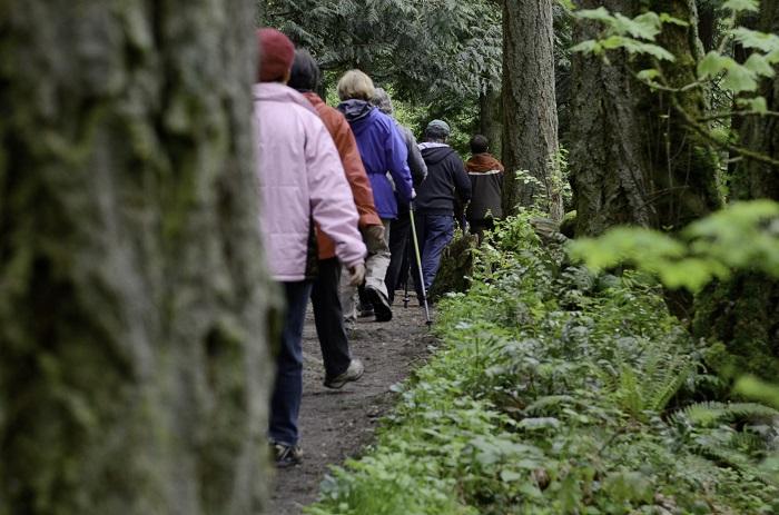 Hiking in Mount Douglas Park