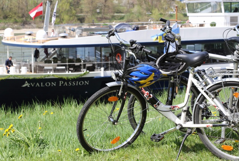 Avalon bike and boat cruises