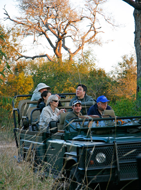 Out on a game drive in Sabi Sands Game Reserve