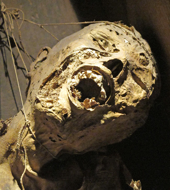 The face of a mummy in Guanajuato's Mummy Museum