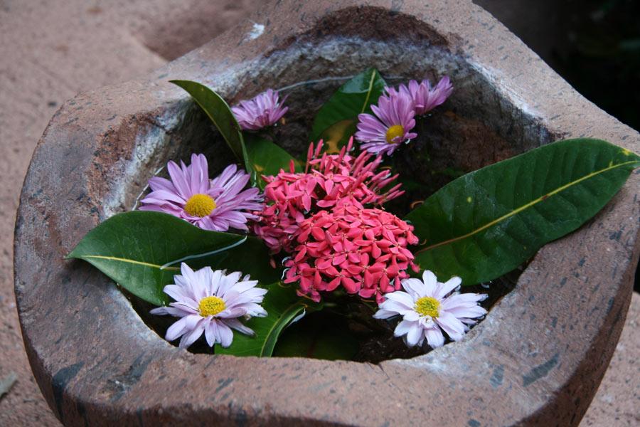 Flowers as art at La Casa Que Canta