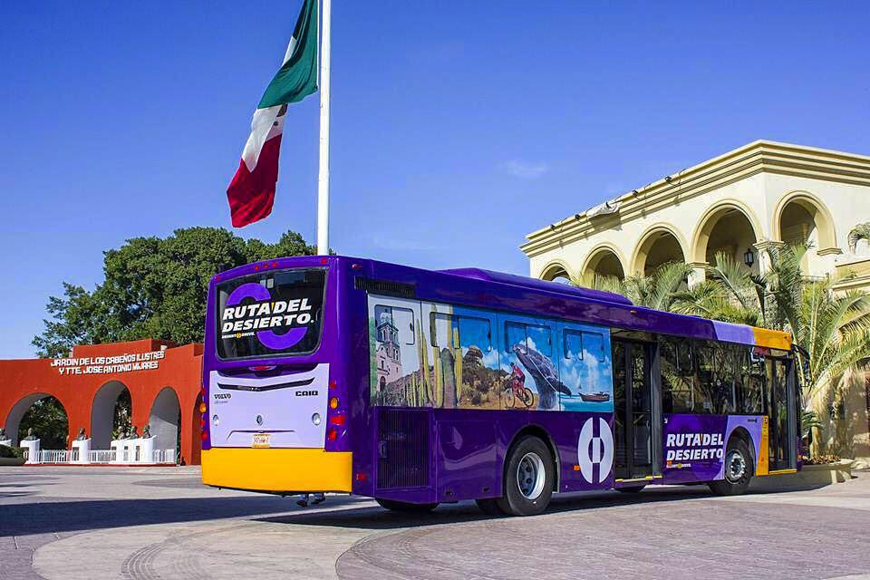 The Ruta del Desierto bus runs daily to and from the Cabo airport