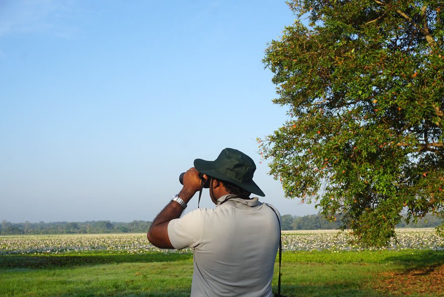 Natural activities at Ulagalla include birdwatching and bicycle riding.