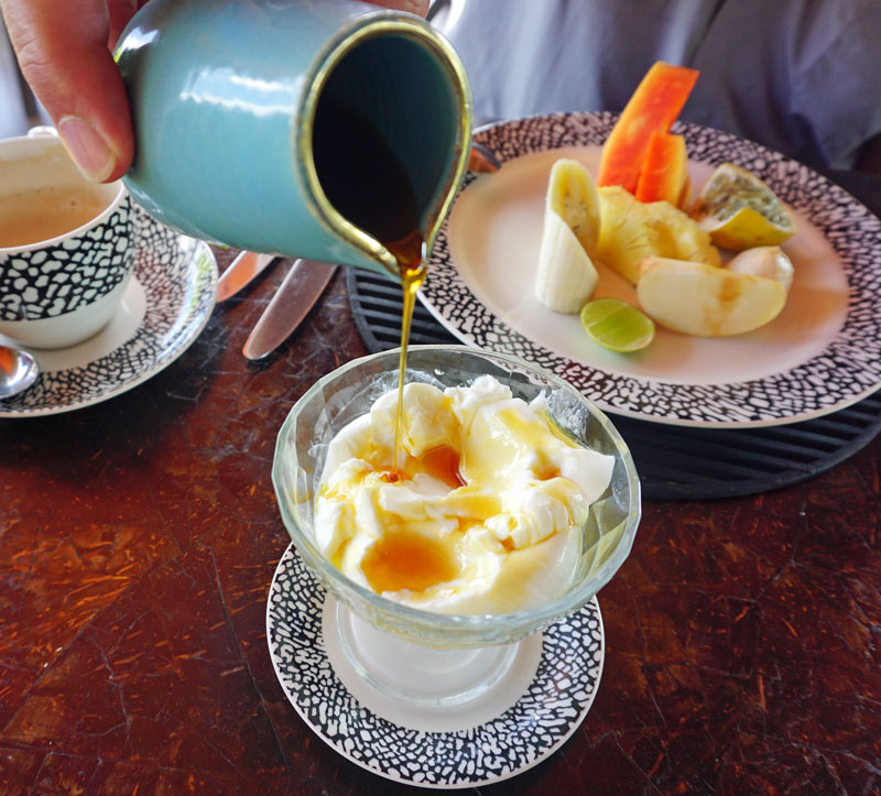 A Sri Lankan breakfast treat: Treacle and buffalo curd (like yoghurt)