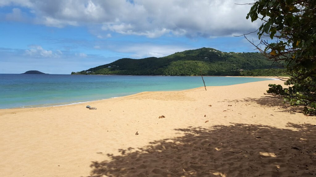 Guadeloupe's pristine Grand Anse Beach: The water is crystal clear and the sand a beautiful golden color.