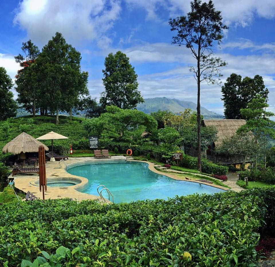 The 98 Acres' swimming pool is an inviting place to relax.