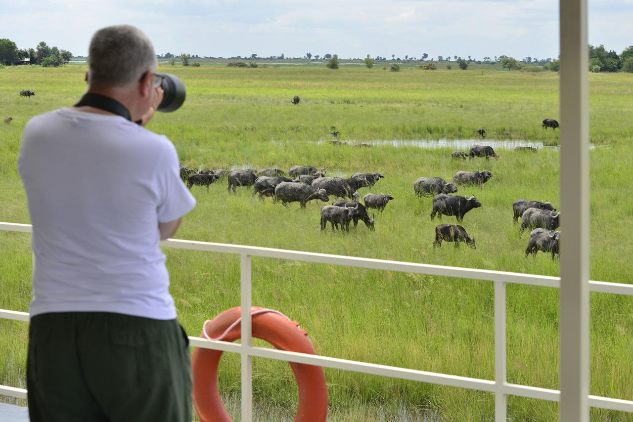 Game viewing from the Chobe Princess