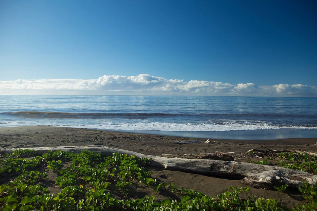 You find black sand beaches on the west coast of Kauai.