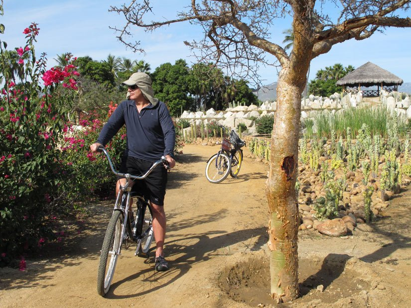 What to do in Cabo? We love biycling around the Puerto Los Cabos marina to the Wirikuta Desert Botanical Garden.