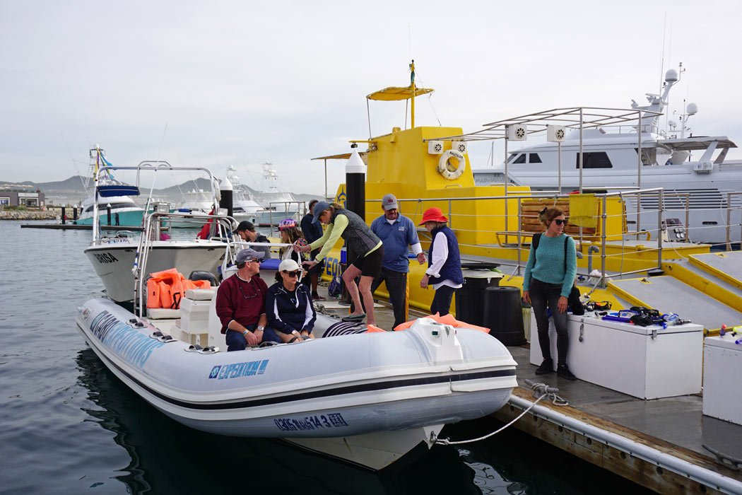 Cabo whale watchers climb into a Cabo Expeditions Zodiac boat