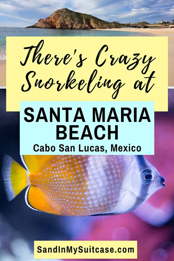 There's crazy awesome snorkeling at Santa Maria Beach in Cabo San Lucas, Mexico!
